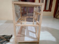 beautiful-cage-small-0