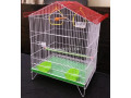 master-cages-top-quality-small-4