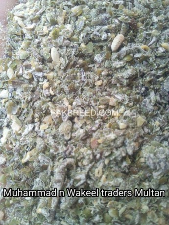 muhammad-n-wakeel-traders-big-1