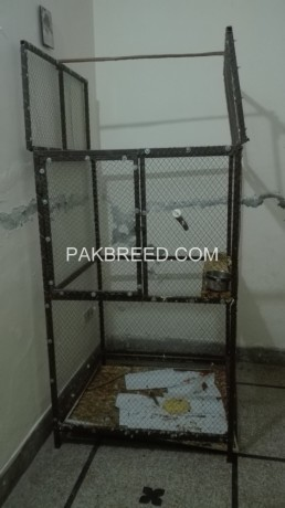 cage-for-sale-big-0