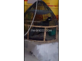 black-francolin-kala-teetar-small-1