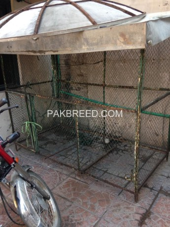 colony-cage-for-sale-big-0