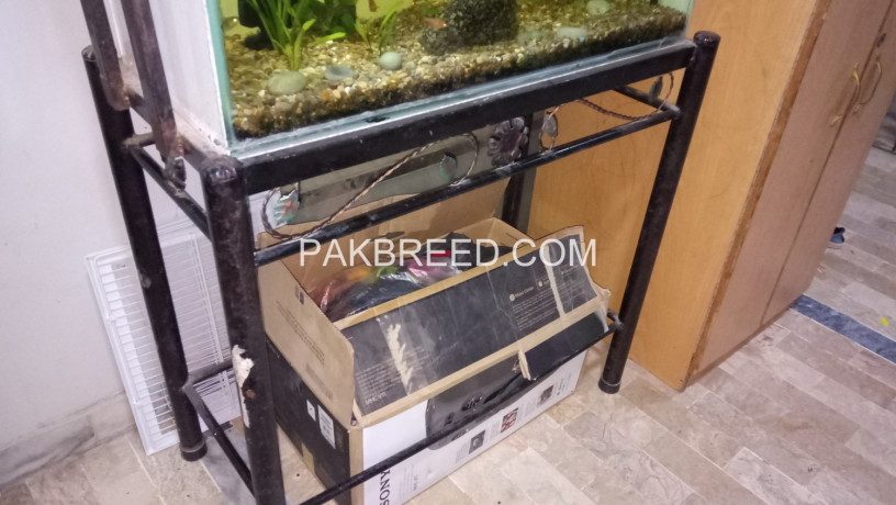 aquarium-sale-big-3