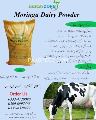 moringa-dairy-powder-big-11