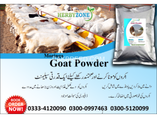 Moringa Goat Powder