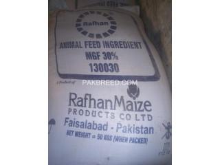 Maize gluten(rafhan)30%