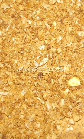 maize-glutenrafhan-30-big-1