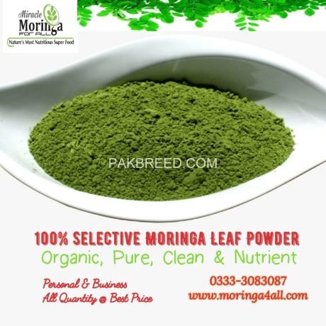 pure-moringa-leaf-powder-big-2