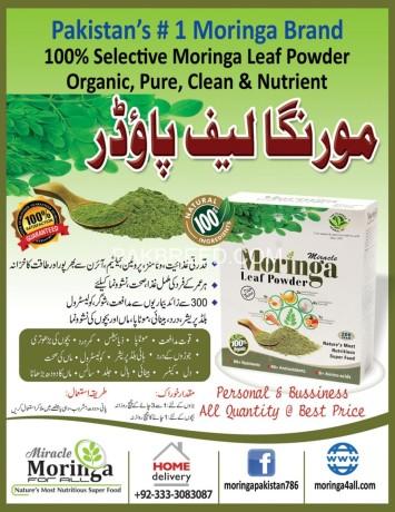 pure-moringa-leaf-powder-big-0