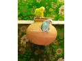 australian-parrots-small-1