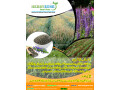 chia-cultivation-seeds-small-2