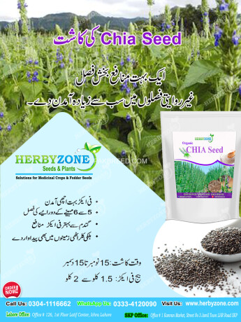 chia-cultivation-seeds-big-1