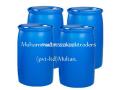 molassesshyrarab-small-2